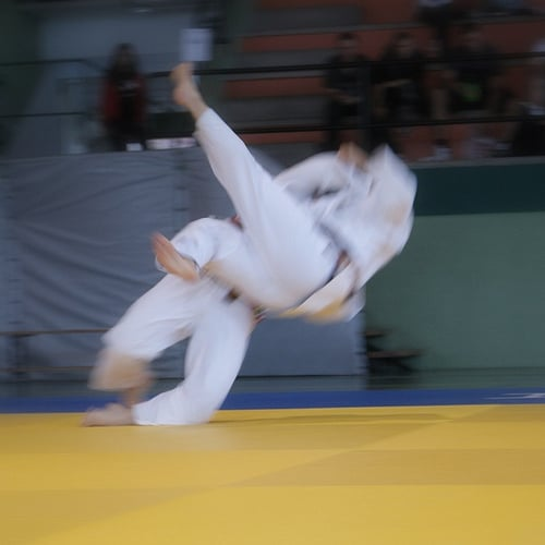 fan de judo