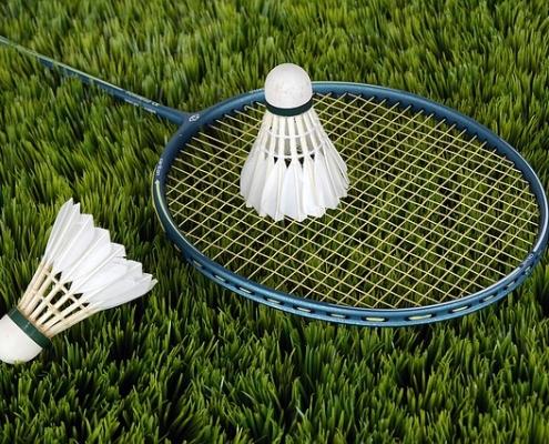 fan de badminton