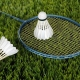 fan de badminton