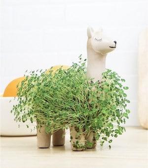lampe à faire pousser